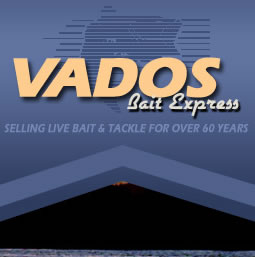 Feature Project – Vados Bait